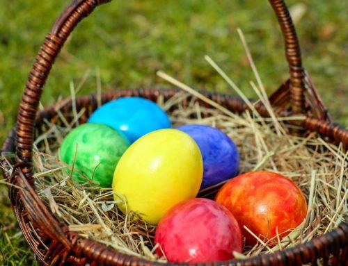 Ukrasite uskršnja jaja u obliku životinja!