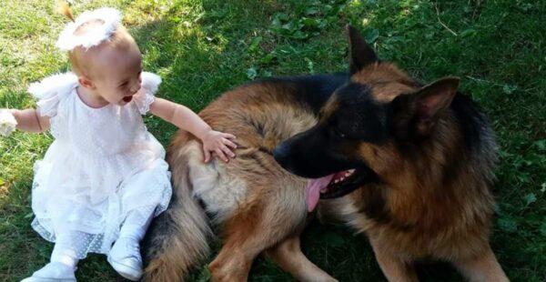 Klinci i ljubimci: Deca koja odrastaju sa životinjama