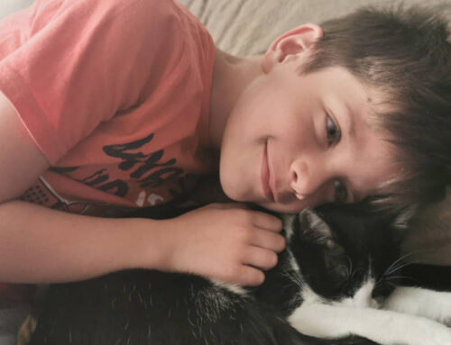 Klinci i ljubimci: Kućni ljubimac je blagoslov za dete!