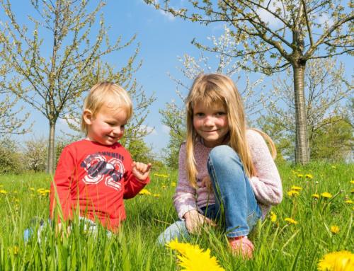 5 razloga zašto je proleće najlepše doba godine